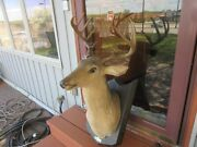 Buck The Singing 10 Point Deer In Motion From Gemmy 2004 W Remote Tavern Bar Pub
