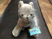 Webkinz Charcoal Cat New With Sealed Code Retired
