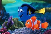Poster The Pursuit By Dory Finding Nemo Marlin Film Cinema Movie Dvd9