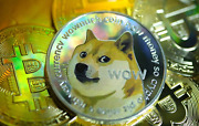 Dogecoindoge Mining Contract 1 Hour | Get 50 Dogecoins Guaranteed