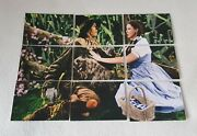 Breygent The Wizard Of Oz Update Trading Card Set