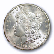 1882 S 1 Morgan Dollar Ngc Ms 66 Uncirculated Blast White And Lustrous Coin