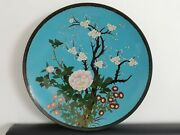 Spectacular Large Antique Meiji Period Japanese Turquoise Cloisonne Charger
