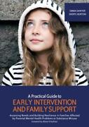 A Practical Guide Pour Early Intervention Et Family Support Par Sawyer Ma Neuf