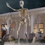 12 Ft Foot Giant Skeleton W/ Animated Lcd Eyes Halloween Prop Home Depot 2021