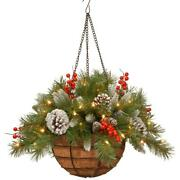 Frosted Berry Hanging Basket Battery Christmas Warm White Led Lights 20 Inch