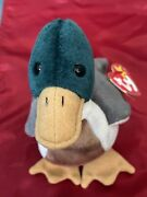 🦆andldquojakeandrdquo The Ty Duck-retired Beanie Baby W/ Errors Clean And Odor Free Mint