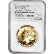 2019 W American Liberty Gold High Relief 1 Oz 100 Ngc Sp69 Enhanced Finish