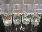 4 Vintage Ned Smith Game Birds 5.5 Cocktail Glass Tumblers Gold Rimmed Rare