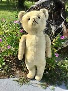 24andrdquo Early American 1910s Electric Eye Teddy Bear Beige Mohair Jointed Arms