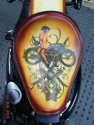 2007 Tattoo Sportster Harley Solo Spring Kit And Seat Set