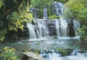 Wall Mural Falls In The Forest Photo Wallpaper Giant Green Wall Art Waterfall
