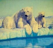 Fred Machetanz Spring Fever -polar Bears Mint S/n W/coa Offer Free S/h