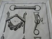 Horse Equestrian Bits Bridle  Amazing Mounted 1700s Engravings Gift Potential J