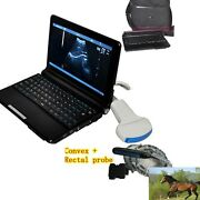 Animal Veterinary Laptop Ultrasound Scanner Machine Convex+rectal Probe 3d Image