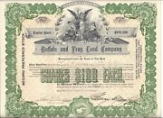 Buffalo And Troy Land Company....1906 Preferred Stock Certificate