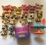 Lot Of 13 Littlest Pet Shops And Accessories Rare