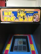 Classic Upright Ms Pac-man Arcade With 60 Games