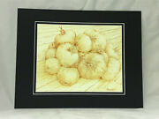 Tomatoes Original Drawing Signed By Bloomington Indiana Artist Violet Working