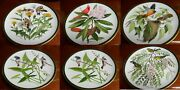 Andldquosongbirds Of The World Franklin Porcelain Plates Goldfinch Cardinals Oriole