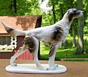 Hunting Dog Figurine From Italy Great Looking Large Pointer /english Setter