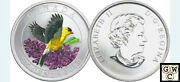 2010 Goldfinch Colorized 25ct Coin Oversized 12663 Ooak