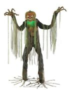 Root Of Evil Animated Prop 7and039 Lifesize Scarecrow Pumpkin Halloween Decoration