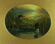 Whispering Waters Moments Of Serenity Plate 2 Bruce Langton Loon Loons Bradford