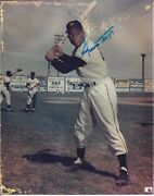 Willie Mays Collectors Lot Signed Photo 27 Individual Cards +baseball Life Book
