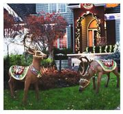 Holidynamics Indoor/outdoor Deer With Led Lights Set Of 2 Christmas W/ Detail