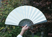 Tactical Titanium Alloy Folding Hand Fan Chinese Tai Ji Wushu Fan Prop Cosplay