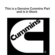 New Original Cummins Supporthydraulic Pump 184357