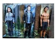 Barbie Twilight Series Collector Bella Swan Edward Cullen And Jacob Black