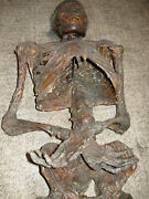 Life Size Rotting Corpse Movie Prop