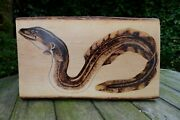 Wooden Wall Art With Fish Eel Design Handcrafted Pyrography Home Fishing Display