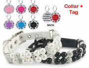 Pearl Leather Dog Collar Stainless Steel Dog Tag White Pearl Dog Collar