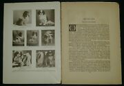 Japanese Spaniel Breed History And Photos From The 1906 Dog Book By James Watson
