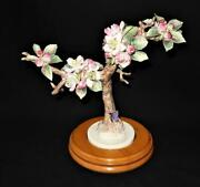 Royal Worcester Crabapple And Butterfly 1940 Pre-wwii Dorothy Doughty 11 X 9 1/4