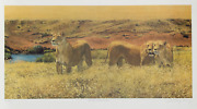 Libby Berry, Look Who's Coming To Dinner, Offset Lithograph, Signed And Numbered
