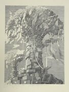 Wojtek Kowalczyk Untitled - Paper Tree Lithograph Signed In Pencil