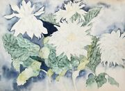 Carl Bergman White Flowers Watercolor On Arches