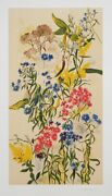 Dorothy Dell Dennison Wild Asters Lithograph Signed And Numbered In Pencil