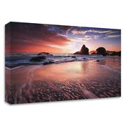 15 X 24 Star Struck By Toby Harriman Visuals Print On Canvas