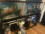 125 Gal Aquarium With 5 Pumps Plus More. Must Sell Fast.