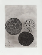 Terry Winters, Album 5, Etching With Aquatint, Signed And Numbered In Pencil
