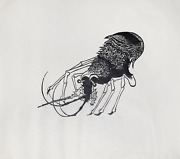Leonard Baskin French Prawn Woodcut Print On Rice Paper Signed And Numbered I