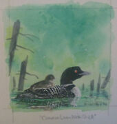 Common Loon With Chick By Nature Artist Robert Halstead - 4 X 5 2006