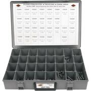 Zt05p 12-point Polished Stainless Steel Coarse Thread Bolt Assortment With Tray