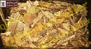 Oud Indian Super 100 Thousand By Arabian Oud - Free Express Shipping Agarwood