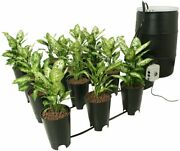 Cap Ebb And Gro Multi-pot System 12 Site Hydroponic System